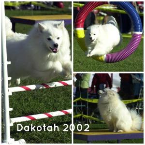 Dakotah 2002 Collage